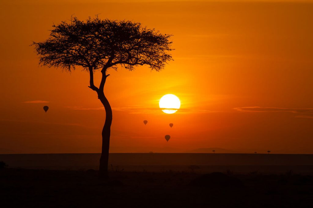 Hot air balloons at sunset in Maasai Mara.