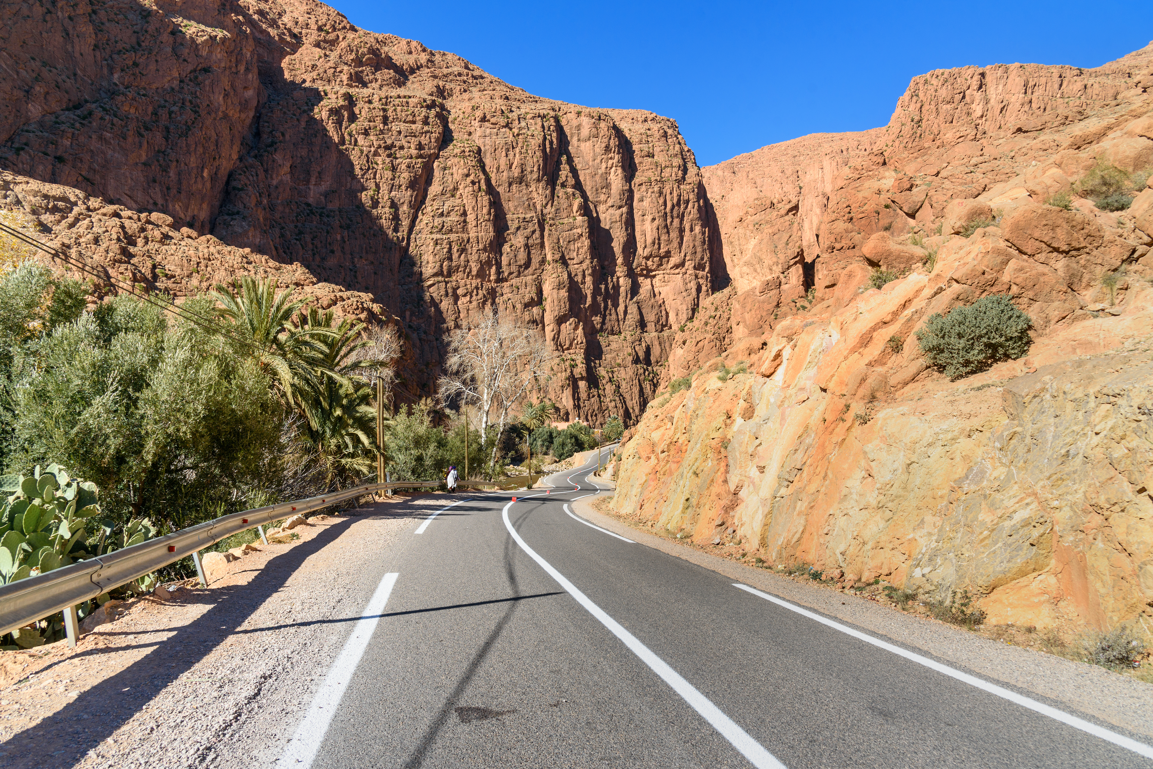 Road to Todra Gorge