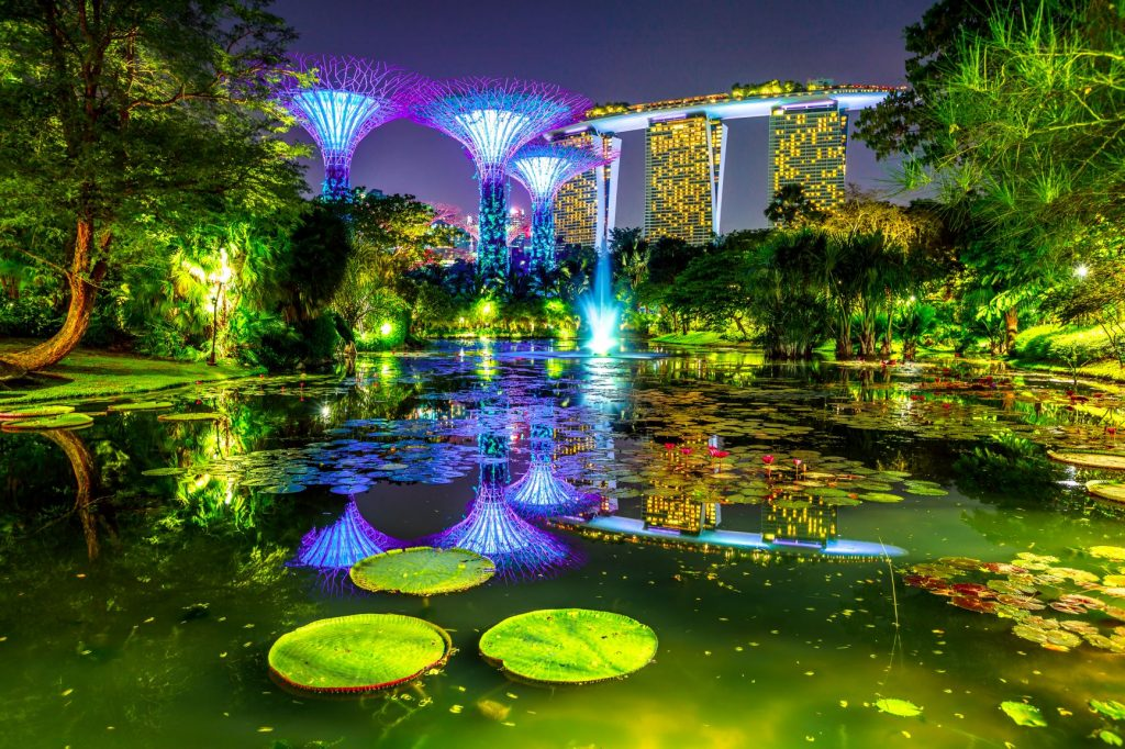 Singapore skyline and modern skyscraper reflecting in water lily pond by the marina bay in central Singapore