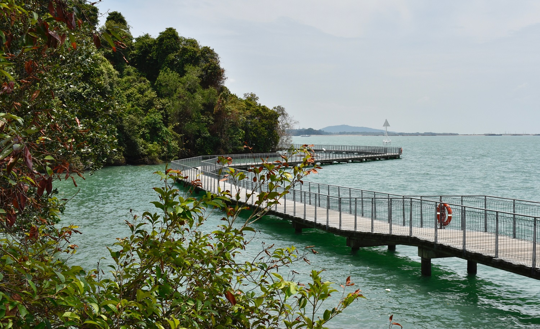 Boardwalk-Pulau Ubin Island-Singapore